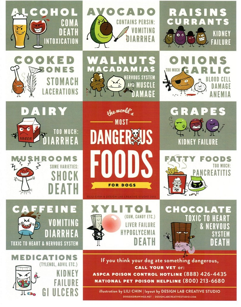 Foods and Additives Toxic to Dogs – FIREPAW, Inc.