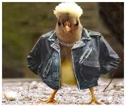 cool biker chick