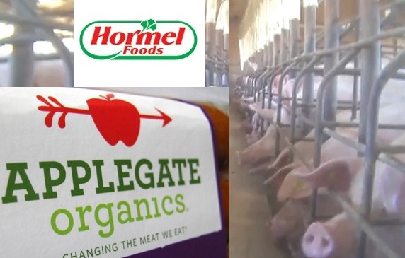 Undercover video shot by the advocacy group Mercy for Animals at West Coast Farms in Henryetta, Okla., allegedly shows workers hitting, throwing and kicking pigs.