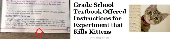 killing-kittens-textbook-experiment