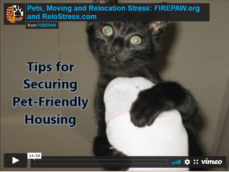 video-pets and relocation